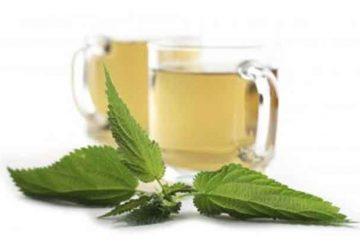 Hierbas medicinales para la gripe