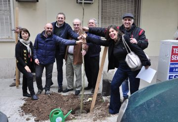 Plan de plantacion y padrinazgo en el Barrio de Flores