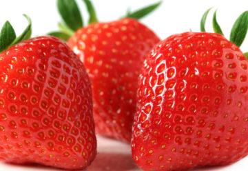 Frutillas, fuente de antioxidantes para estar joven y en forma
