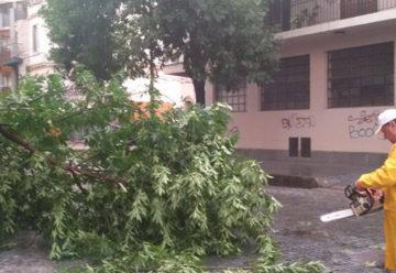 Operativo de emergencia por el temporal