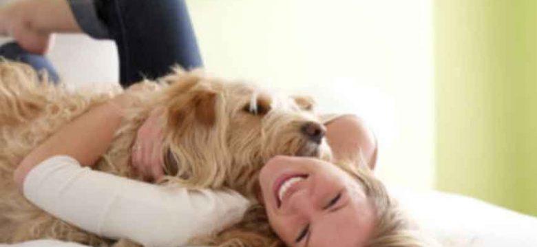 Beneficios de tener una mascota para superar la depresión