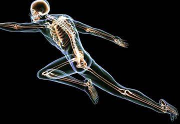 Cuidar la salud de tus huesos y tu cuerpo