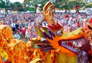 Gran participación del Festival del Año Nuevo Chino