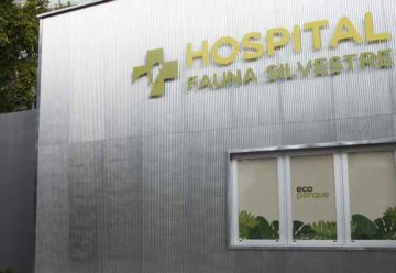 Avanzan las obras del Hospital Veterinario del Ecoparque