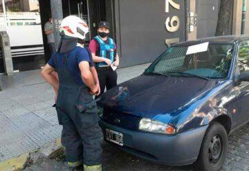 Bomberos rescataron a un gato atrapado en motor de auto